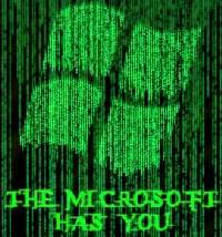 the microsoft has you